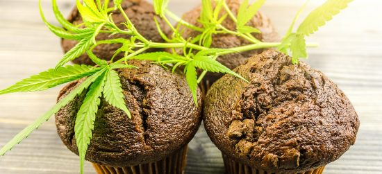 Cannabis Chocolate muffins Marijuana CBD infused foods edibles