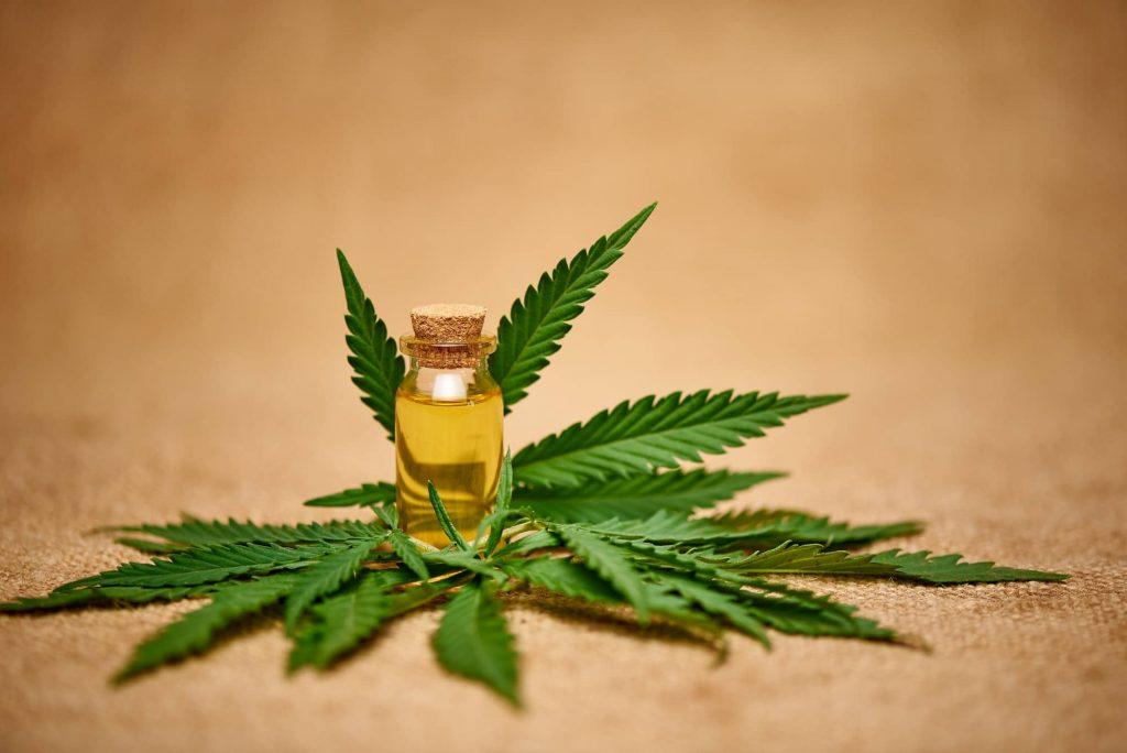 Cannabis extrait huile CBD