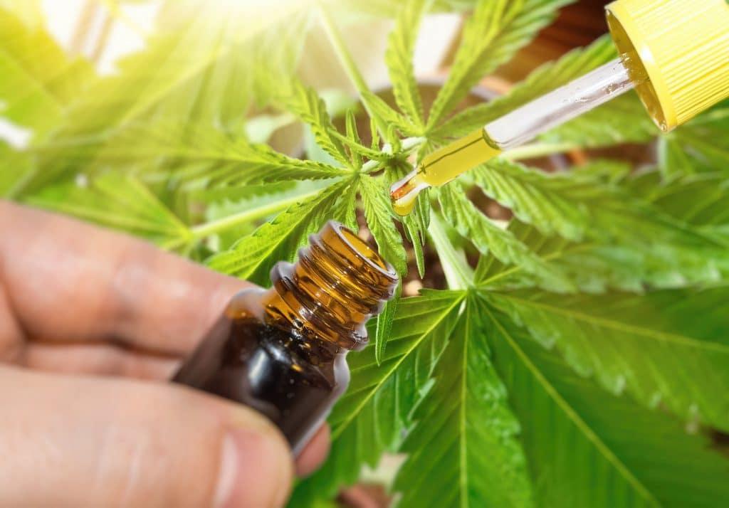 L'huile de CBD est pleine de vertus. Ses propriétés relaxantes favorisent l'endormissement.